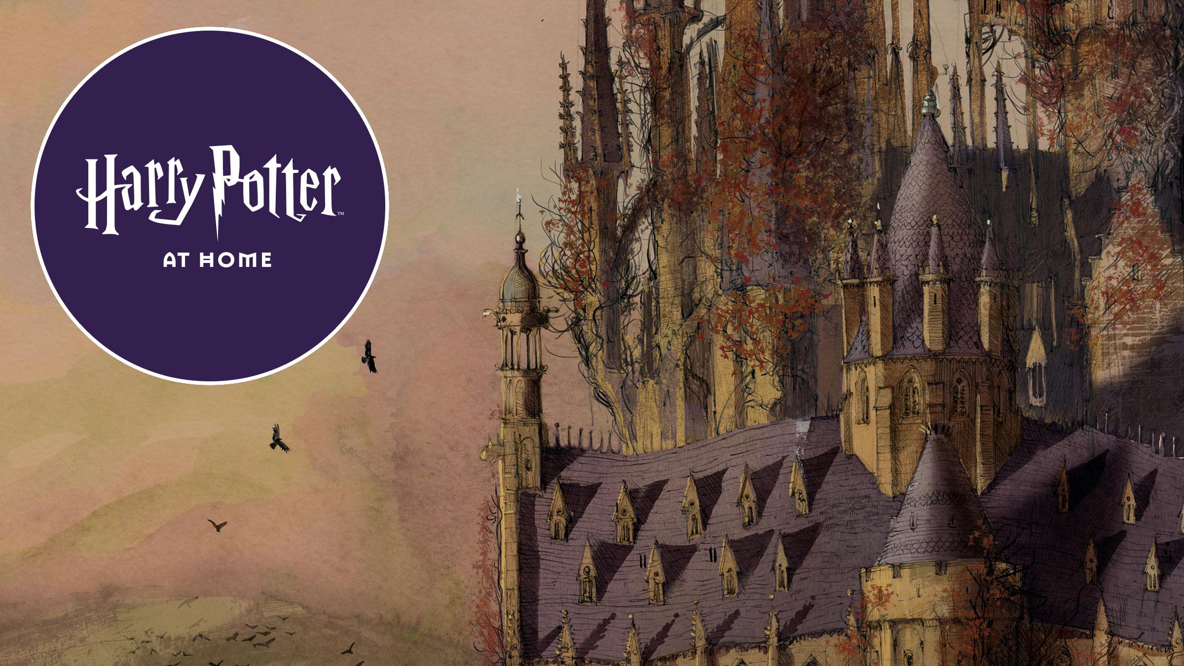 La nueva web en cuarentena de Harry Potter